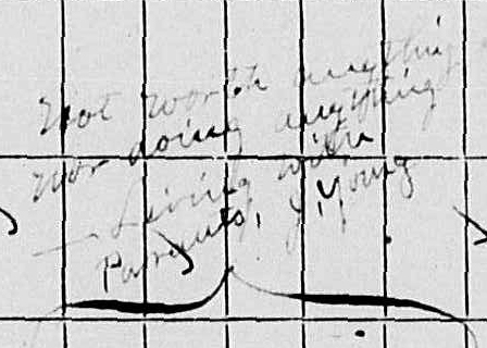 Note on Young 1870 census